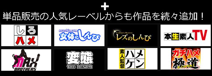Hey動画の月額見放題プランに新レーベル追加!